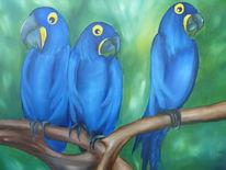 Papagei, Blau, Malerei, Warten
