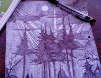 Taiga, Leben, Zeichnungen