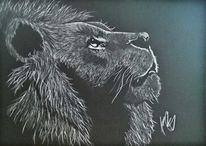 Zeichnungen, König