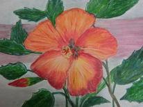 Pflanzen, Liebe, Valentinstag, Blumen
