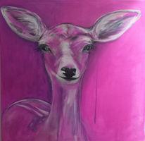 Reh, Tiere, Wild, Pink