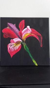 Acrylmalerei, Malerei, Iris,