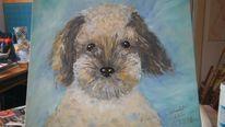 Acrylmalerei, Hund, Niedlich, Tierportrait