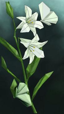 Lilie, Origami, Schmetterling, Schlüpfen