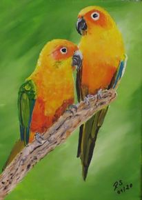 Äste, Grün, Gelb, Papagei