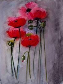 Knospe, Mohn, Blumen, Kapsel