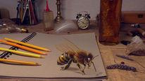 Zeichnen biene, 3d biene malen, 3d zeichnung, Nahaufnahme