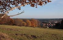 Häuser, Landschaftsfotografie, Braunlage, Wiese