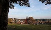 Goldener oktober, Landschaft, Harz, Wiese