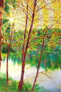 Teich, Herbst, Harz, Wasser
