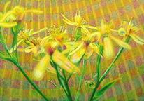 Gelb, Landschaft, Lichtmalerei, Blüte