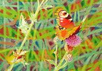 Blüte, Lichtmalerei, Schmetterling, Grün