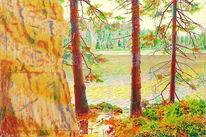 Sommer, Wasser, Harz, Urwald