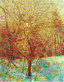 Baum, Schnee, Naturmalerei, Sonne