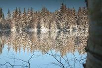 Teich, Schnee, Landschaft, Fotografie