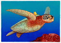 Kinderbuch, Ozean, Illustration, Schildkröte