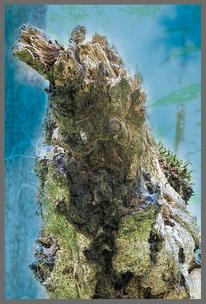 Abstrakt, Totholz, Farben, Pflanzen