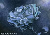 Mondschein, Blumen, Schwarz, Blau