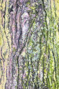 Acrylmalerei, Baumrinde, Natur, Malerei