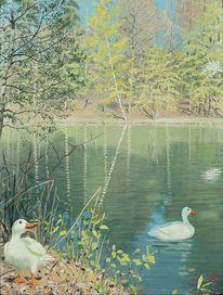 Landschaft, Ente, Wasser, Pflanzen