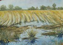 Gras, Pfütze, Feld, Aquarell