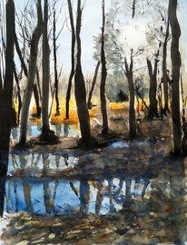 Sumpf, Spiegelung, Wald, Aquarell