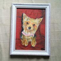 Tierportrait, Bunt, Hund, Bleistiftzeichnung