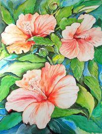 Hibiscus, Malerei, Grün, Sonne