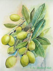 Grün, Sommer, Aquarellmalerei, Früchte