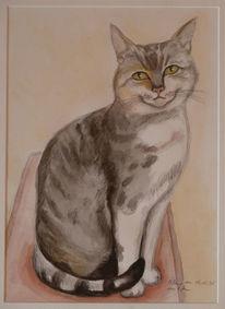 Katze, Aquarellmalerei, Blick, Aquarell