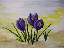 Frühling, Blüte, Krokus, Malerei