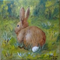Wiese, Hase, Natur, Tiere