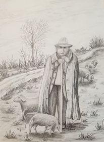 Hirte, Natur, Schaf, Wiese