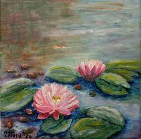 Blätter, Seerosen, Rosa, Teich