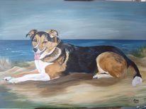 Hundeportrait, Meer, Berner, Acrylmalerei