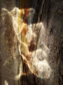 Licht, Spiegelung, Fotografie,