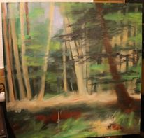 Licht, Buch, Kontrast, Wald