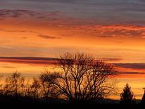 Himmel, Baum, Glühen, Fotografie