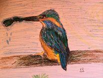 Eisvogel, Pastellmalerei, Tiere, Zeichnen