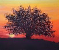 Bild überarbeitet, Sonnenuntergang, Baum, Abendstimmung