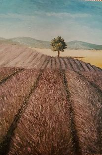 Lavendel, Sommer, Baum, Malerei