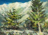 Landschaft, Schnee, Alpine fir, Berge