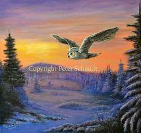 Acrylmalerei, Eule, Sonne, Schnee