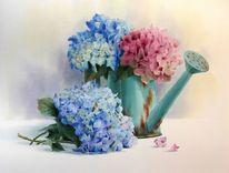 Gießkanne, Stillleben, Hortensien, Blumen