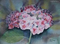 Blüte, Lasurtechnik, Blumen, Hortensien