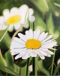 Blumen, Gänseblümchen, Wiese, Malerei