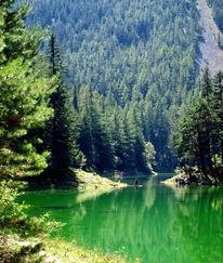 See, Natur, Wasser, Fotografie