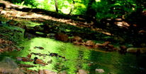 Wasser, Natur, Steine, Fotografie