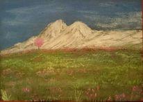 Landschaft, Blumen, Alpen, Berg