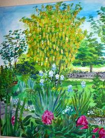Grün, Zierkirschen, Vorgarten, Goldregen